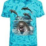 Urlaubsstimmung mit Delfinen